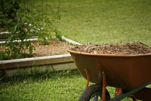 Beginner's Guide - How To Choose The Right Mulching Blades