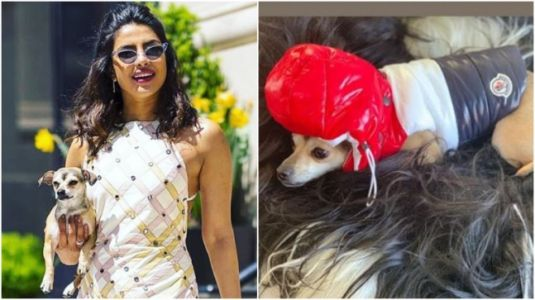 Priyanka Chopra gets her dog winter jacket for Rs 36,000!