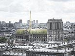 Notre Dame reborn.as a GREENHOUSE: French architects propose replacing damaged roof with glass