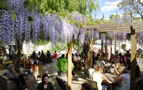 The 20 best beer gardens in London