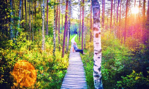 What is 'forest bathing' - and how can you try it yourself?