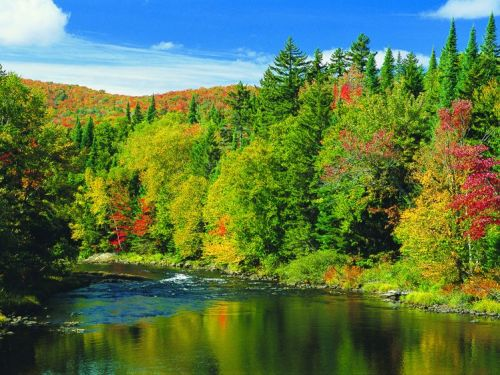 8 Of The Best Places To See Fall Colours In Canada