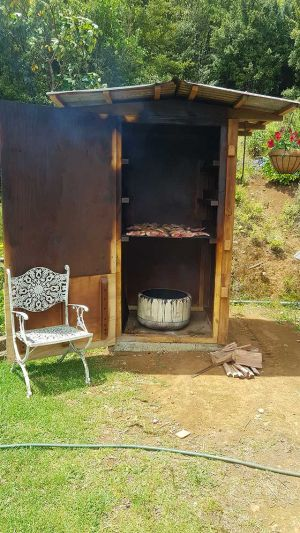 Polly Greeks' Blog: An advert for the off-grid lifestyle