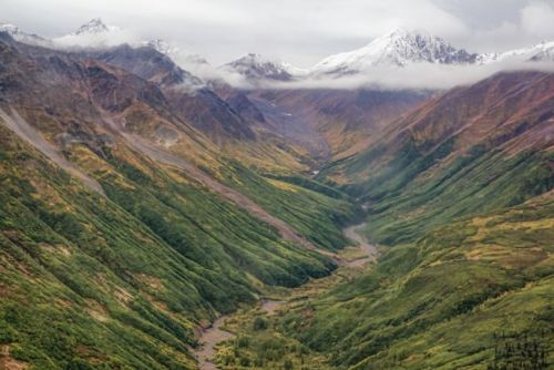 Chasing Fall in Alaska: Where to go for Autumn Colors from North to South