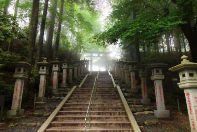 11 Amazing Day Trips To Take From Tokyo