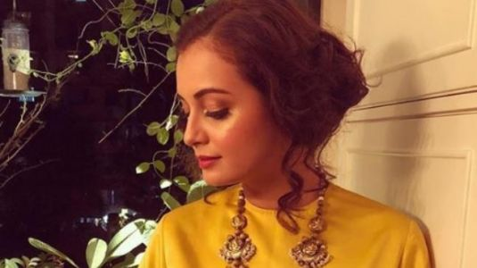 Watch: Dia Mirza has a really strong core; here's proof