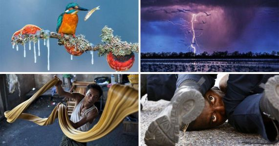 These powerful pictures beat thousands of entries to make you marvel at the world