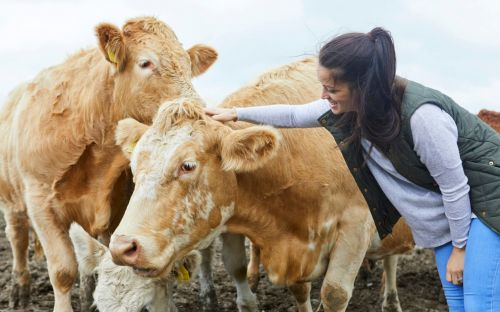 Goodbye Veganuary, hello Februdairy: how the dairy industry is taking the fight to its vegan critics