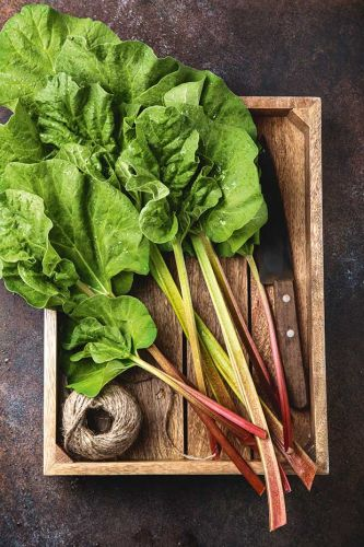 8 expert gardening tips for growing great rhubarb in New Zealand conditions