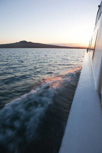 Photo essay: Discover the historic baches of Rangitoto Island