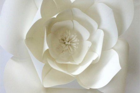 30 Beautiful Paper Flower Template Pdf Pictures
