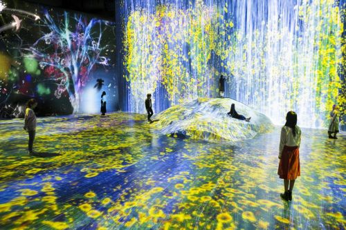Unprecedented Digital Art Museum in Tokyo presents a borderless world that visitors explore freely