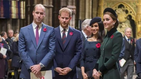 Meghan Markle and Kate Middleton fight: Prince Harry and William to not work together
