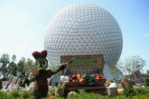 These Disney World attractions didn't reopen when the park did. Here's what we know