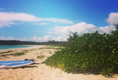 Deserted beaches and boutique hotels: Why unspoilt, laidback Vieques should be the island for your next Caribbean holiday