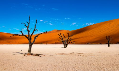 8 of the best things to do in Namibia