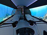 Swiss firm Yasava offers private jet cabin upgrades that include covering the walls in OLED screens