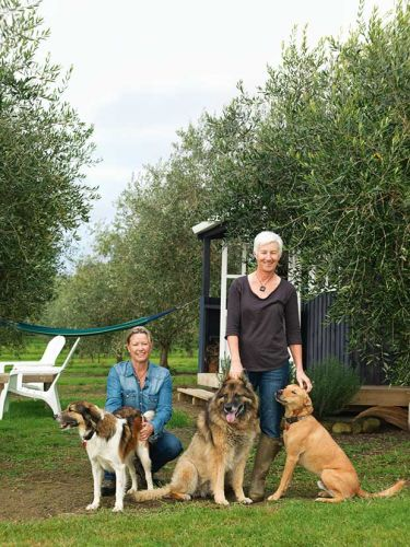 How Brooke and Maggie Noonan swapped their Auckland Zoo jobs for off-grid living in the Far North