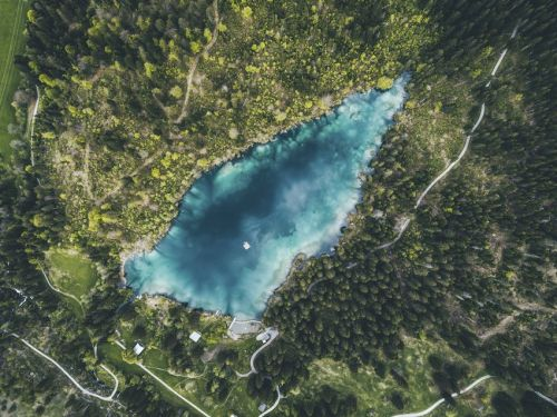 Take a Dip in a Swiss Forest Lake
