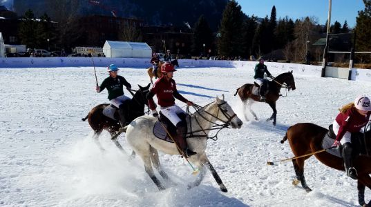 A Beginner's Guide To Snow Polo
