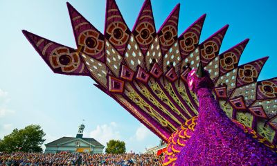 Amsterdam and the Dutch Flower Parade