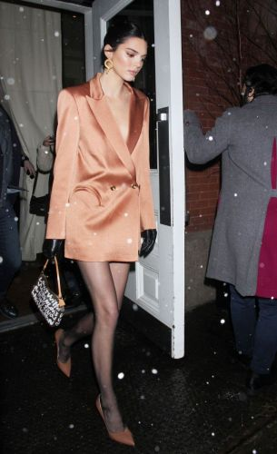 Is Kendall Jenner's Blazer Dress a New Take on the Shirtdress?
