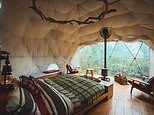 Bell tents, cabins, domes - why this rugged Welsh retreat is just the tonic we all need