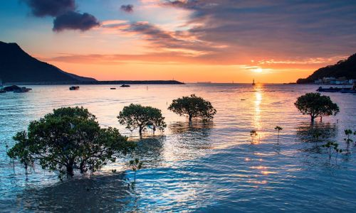 Grab your ferry tickets for Hong Kong's best island escapes