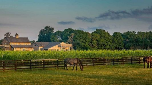 5 U.S. Wineries That Are Surprisingly Family-Friendly