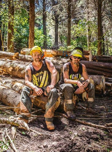 6 trends to consider when planning a specialty timber crop