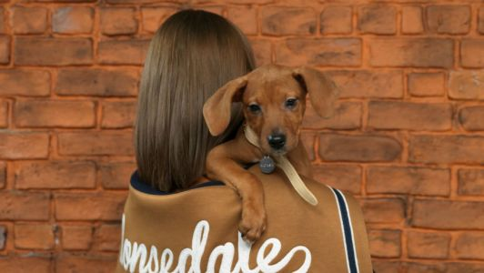 Hey, Quick Question: Could Fashion Convince You to Adopt an Adorable Rescue Pet This Holiday?