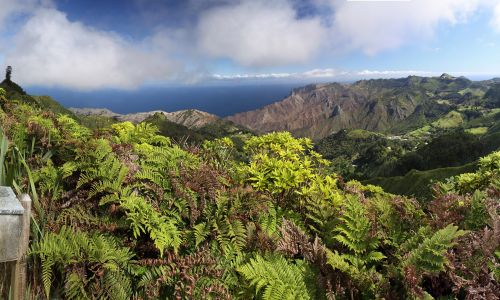 The 7 Wonders of St Helena