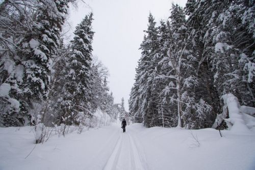 Extreme Winter Packing List for Alaska