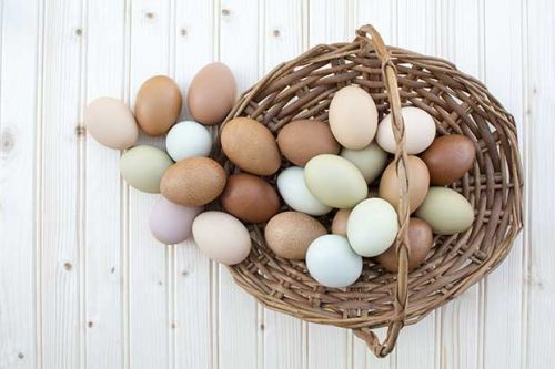 5 common egg imperfections and what they say about your chickens
