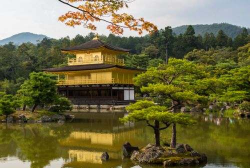 The Best Time to Visit Japan: A Month-by-Month Guide