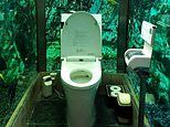 Japan's Hipopo Papa Cafe spends over £200k installing a toilet that's surrounded by a huge fish tank