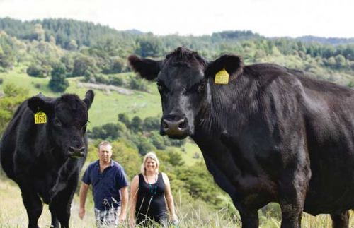 Final call for entries for Outstanding NZ Food Producer Awards