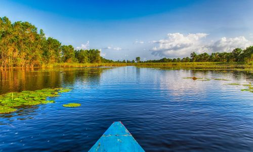 7 amazing things you must do in Suriname