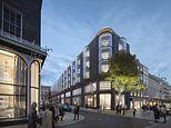 LVMH group to build one of London's most expensive hotels Cheval Blanc in Mayfair for £500 million