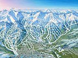 James Niehues: The man who HAND-PAINTED the ski trail maps for over 200 resorts