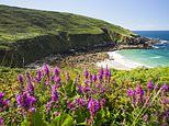 Top 25 UK staycation locations: Places Britons most want to visit this summer