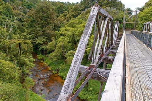 Exploring Northland's history on the Twin Coast Cycle Trail