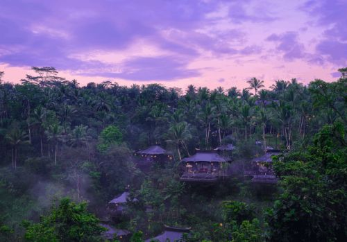 The best luxury resorts in Ubud to find peace within nature