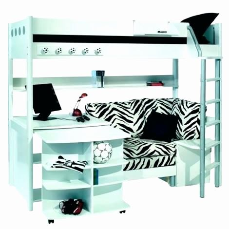 29 Luxury Loft Bed with Desk for Girls Pictures
