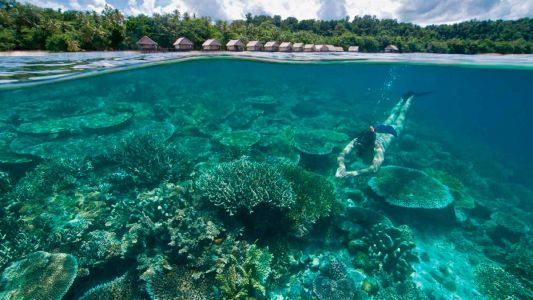 Sustainable eco resorts in Raja Ampat, Indonesia's diving paradise