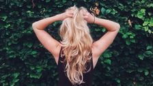 Why You Should Be Using Aloe In Your Hair Care Routine