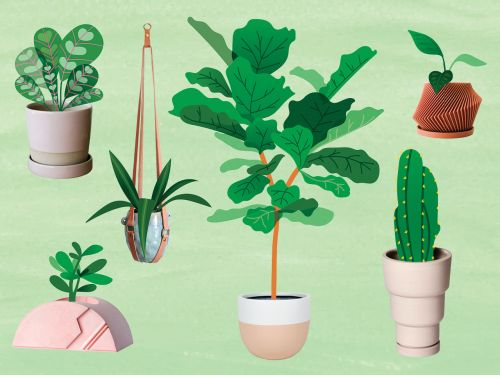 17 Cute Planters For Every Style And Budget
