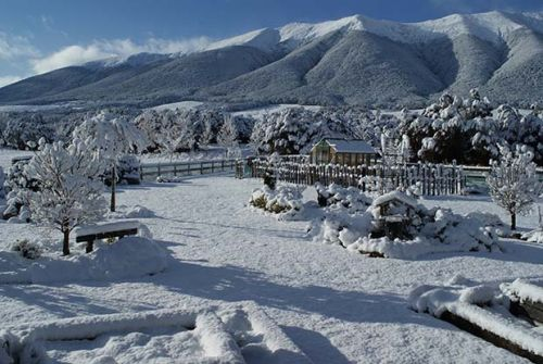 Escape the hustle and bustle at The Woodsman's Den in St Arnaud