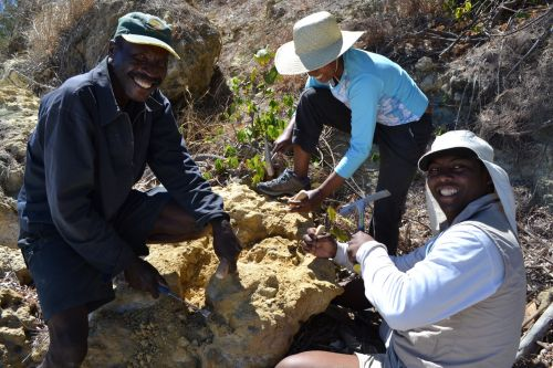 Fossils and Taboos: What to expect when doing paleontological fieldworks in Madagascar