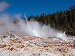World's tallest geyser erupted THIRTY times in 2018